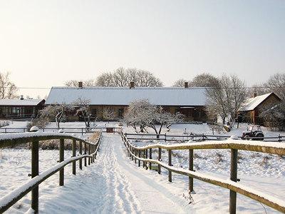 Foto från Julefrid i Winterland på Statarmuseet