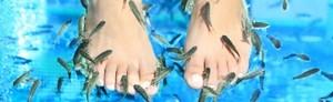 Fiskpedikyr fotbad