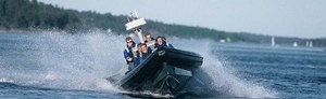 Safari i skärgården med snabb båt