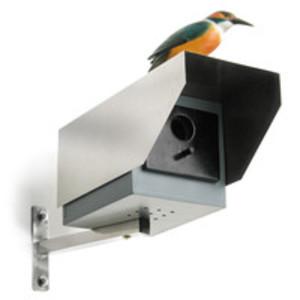 Big Brother fågelholk