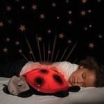 Nattlampa stjärnhimmel - Nyckelpiga