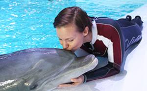 Närkontakt delfin