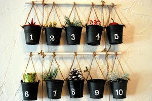 adventskalender med växter